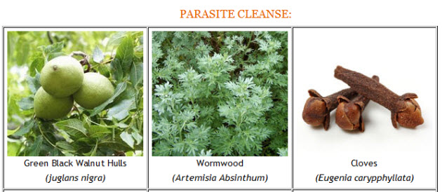 Parasite Cleanse Pic 1
